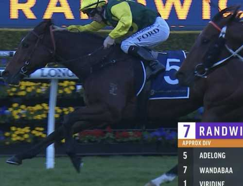 BRAD GETS STAKES BREAKTHROUGH WITH ADELONG ALONG WITH NEWCASTLE DOUBLE