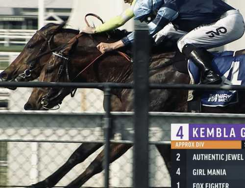 Brads' Kembla double as he looks ahead to the spring