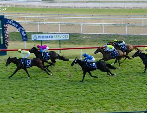 IT'S SEVEN UP FOR BRAD – AND NOW FOR RANDWICK